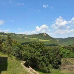Val d'Orcia Farmhouse for Sale image 22