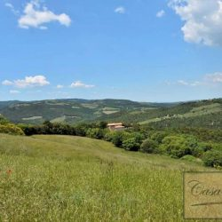 Val d'Orcia Farmhouse for Sale image 23