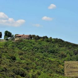 Val d'Orcia Farmhouse for Sale image 21