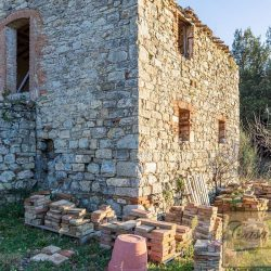 Val d'Orcia Farmhouse for Sale image 18