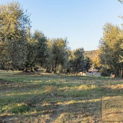 Val d'Orcia Farmhouse for Sale image 9