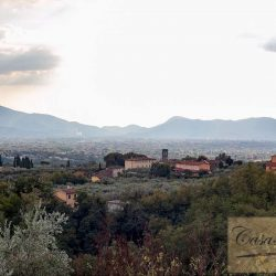 Tuscan Villa with Pool for Sale image 37