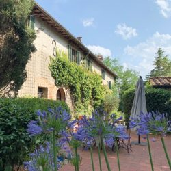 Chianti property for sale image 13