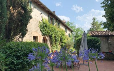 Beautiful Chianti Property for Sale