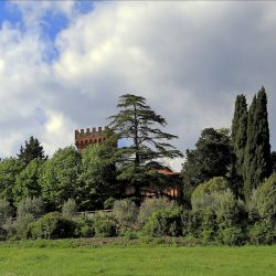 Chianti Estate for Sale near Florence image 33