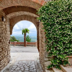 Delightful Umbrian Village House with 3 Terraces for sale (23)