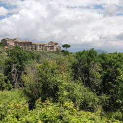 Delightful Umbrian Village House with 3 Terraces for sale (40)