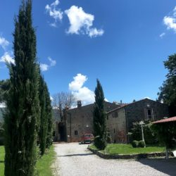 Renovated Villa Just 3km from Cortona 5