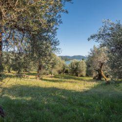 Large Historic Villa for Sale in Magione 10