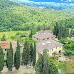 Winery with Borgo of 8 Apartments 6
