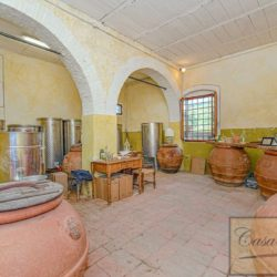 Winery with Borgo of 8 Apartments 37
