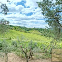 Winery with Borgo of 8 Apartments 13