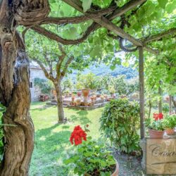 Winery with Borgo of 8 Apartments 4