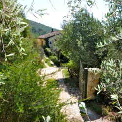Panoramic Country House near Vicopisano 25