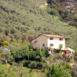 Panoramic Country House near Vicopisano 21