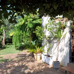 Panoramic Country House near Vicopisano 30