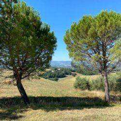 Farmhouse to Restore near Castiglione del Lago 26