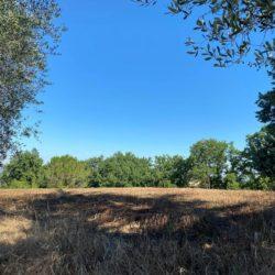 Farmhouse to Restore near Castiglione del Lago 17