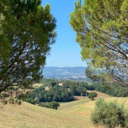 Farmhouse to Restore near Castiglione del Lago 22