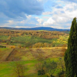 Sarteano Villa with Roman Pool and 2.5 Hectares 17