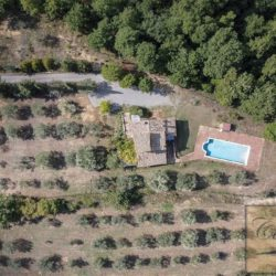 Hilltop Farmhouse Property with Olives near Montepulciano 5