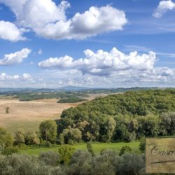 Hilltop Farmhouse Property with Olives near Montepulciano 13