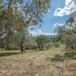 Hilltop Farmhouse Property with Olives near Montepulciano 12