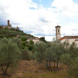 18th Century Hillside Villa with 2 Annexes 14