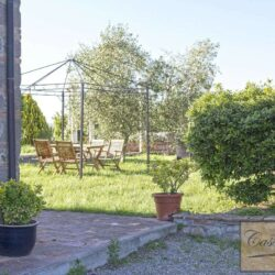 18th Century Country Hotel + Pool + Olives 53