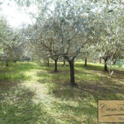 Stone Farmhouse 3km From Lucca 27