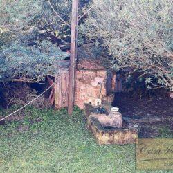 Ancient Farmhouse To Restore Near the Sea 16