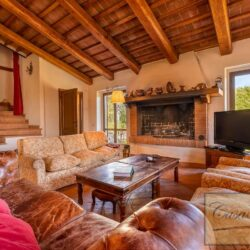 Country House with 34 Hectares and Pool 25