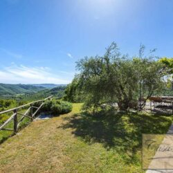 Country House with 34 Hectares and Pool 3