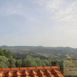 Restored Country Villa with Guesthouses and Pool 61