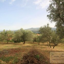 Restored Country Villa with Guesthouses and Pool 24