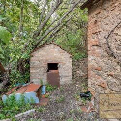 House with Olives and Vineyard near Montepulciano 16