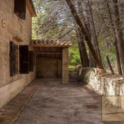 House with Olives and Vineyard near Montepulciano 3