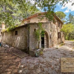 House with Olives and Vineyard near Montepulciano 5