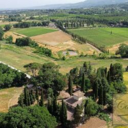 Country House with 17 Hectares To Restore 5