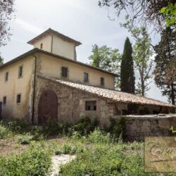 Country House with 17 Hectares To Restore 6