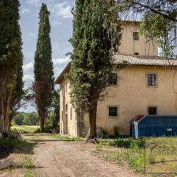 Country House with 17 Hectares To Restore 8