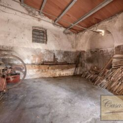 Country House with 17 Hectares To Restore 23