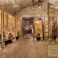 Country House with 17 Hectares To Restore 25